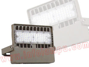 Lampu Sorot LED 30-50 Watt HL-5110